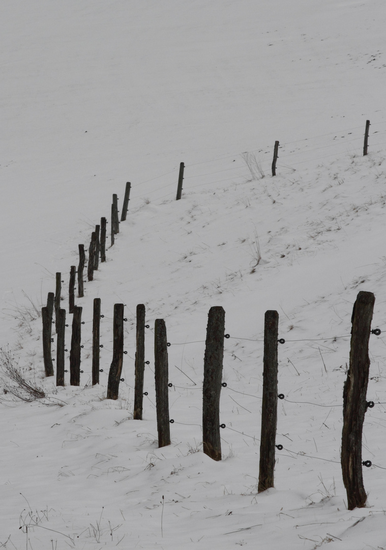 ..Winter Ade?