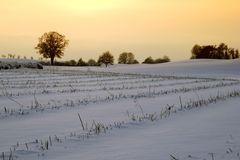 Winter afternoon - Winternachmittag 3