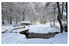 Winter  am Bach -2-