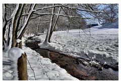Winter am Bach -3-