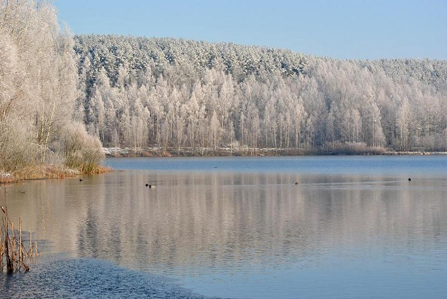 Winter am Baggersee