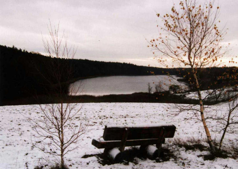 Winter am Bornsee