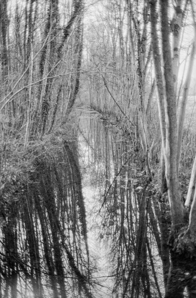 Winter am Bronnwasser