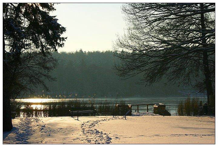Winter am Buckowsee