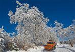Winter am Erbeskopf 3