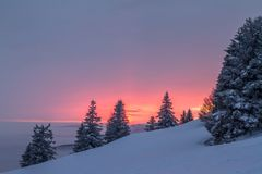 Winter am Feldberg