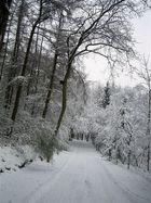 Winter am Hammberg