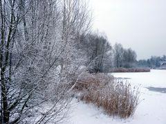 Winter am Kiesteich