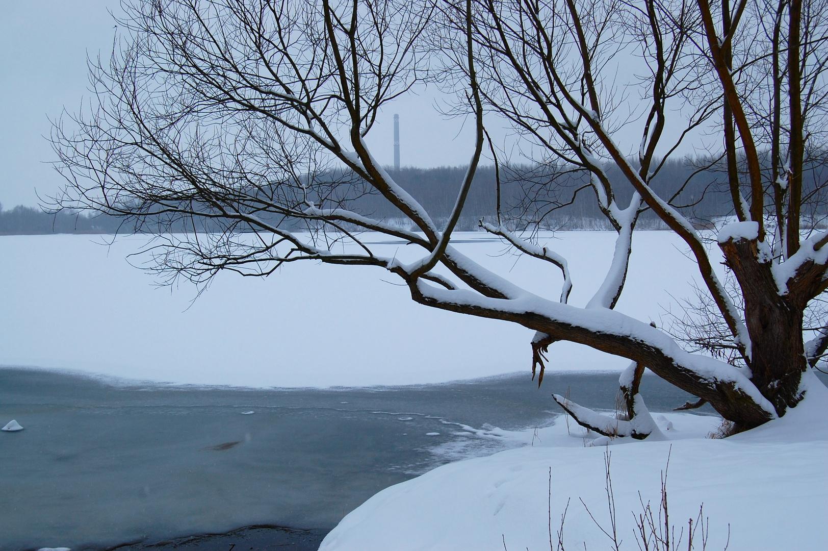 Winter am Kulki 2