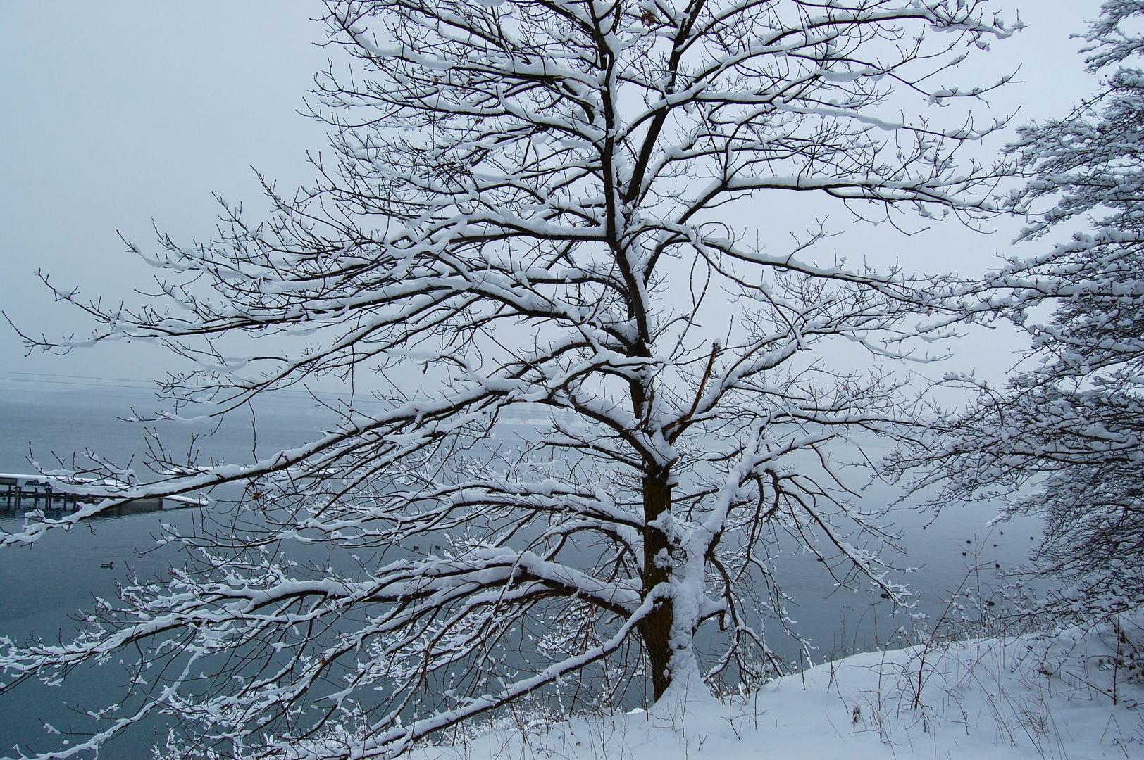 Winter am Kulki 3