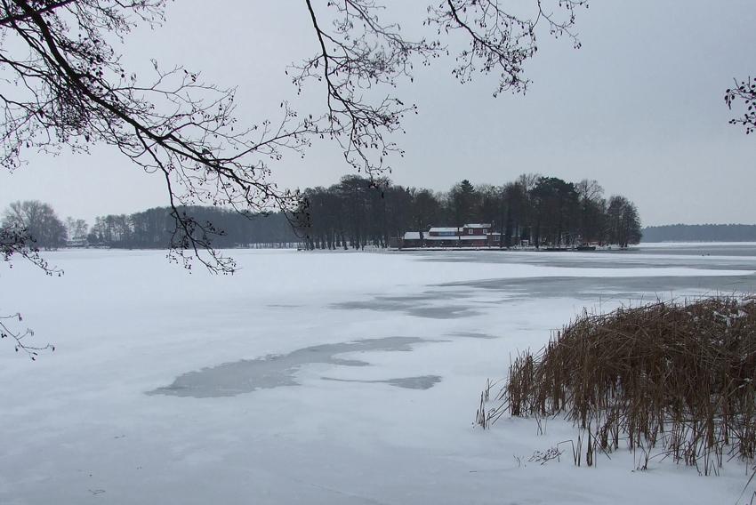 Winter am Kyritzer Untersee 1