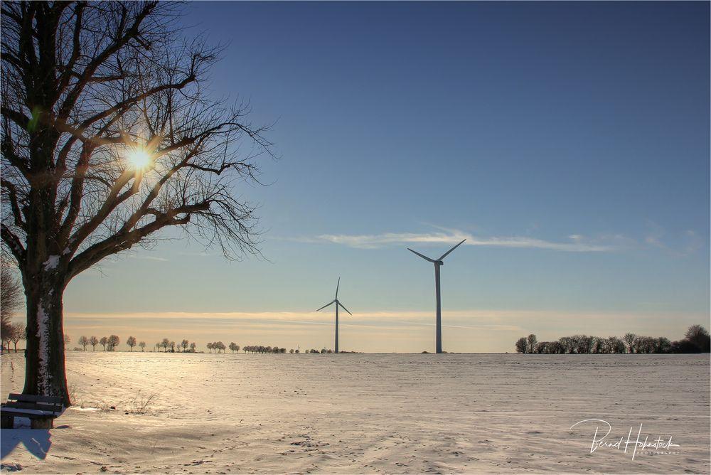 Winter am Niederrhein .... geht zu Ende