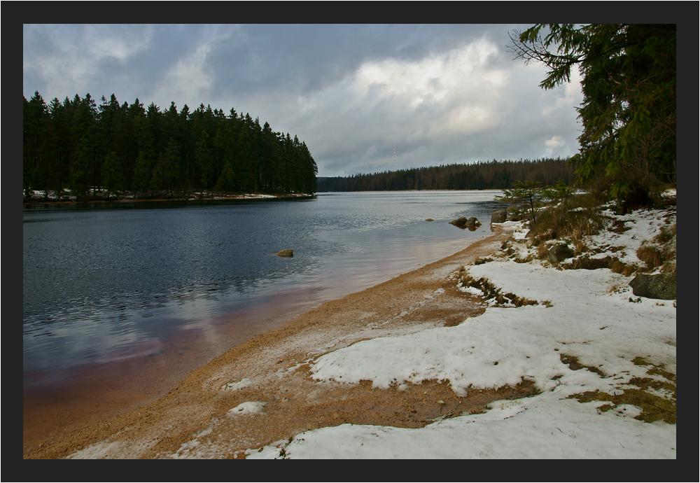 Winter am Oderteich