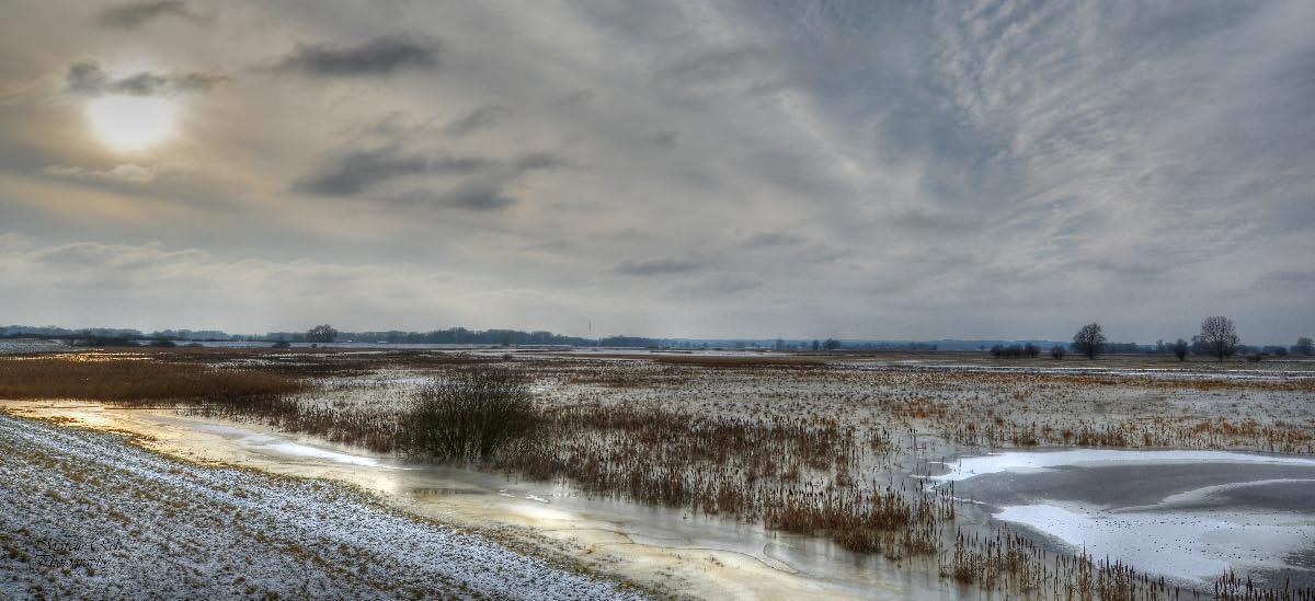 Winter am Penkefitzer See 2 ( Penkefitz )