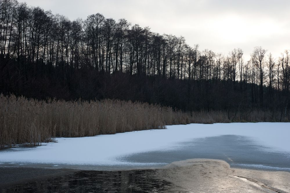 Winter am Riebener See  ( I.)