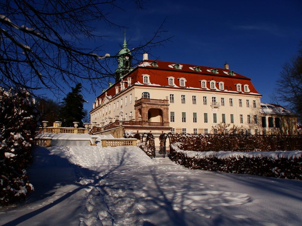 Winter am Schloss Lichtenwalde