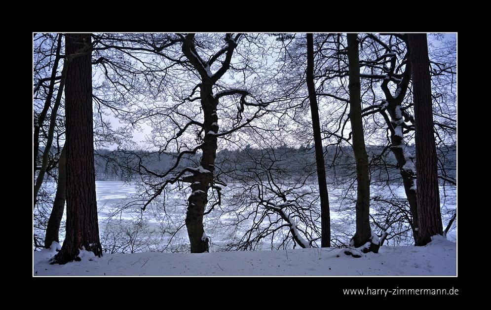 Winter am See