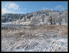 Winter am See