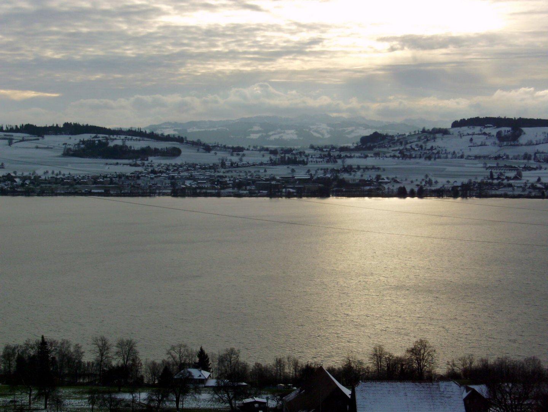 Winter am Sempachersee