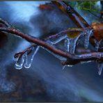Winter am Sigruntsky potok