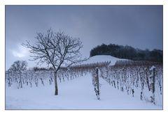 Winter am Stollberg
