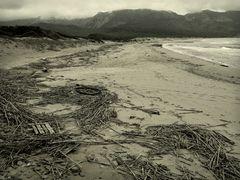 Winter am Strand  /  L'inverno in spiaggia