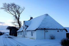 Winter am Süderdeich