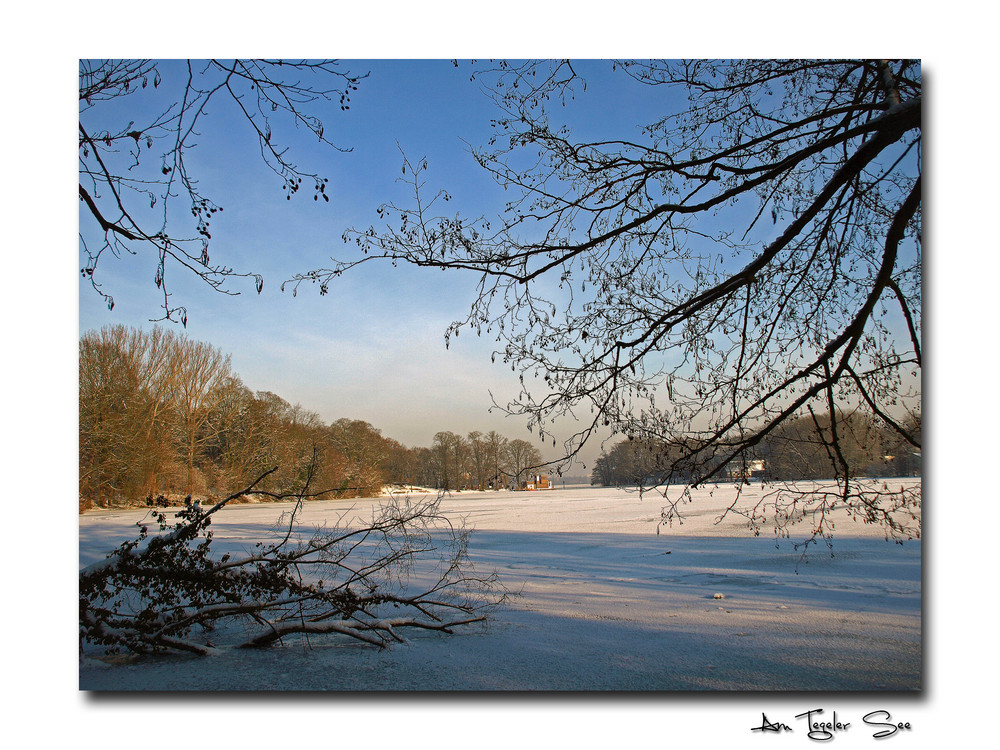 Winter am Tegeler See