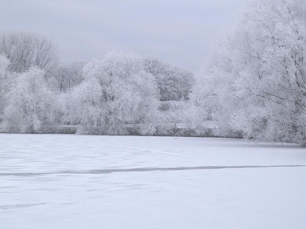 Winter am Vechtesee