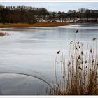 Winter am Wanzkaer See
