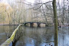 Winter am Weiher - 1 -