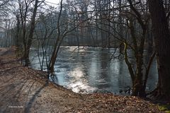 Winter am Weiher - 2 -