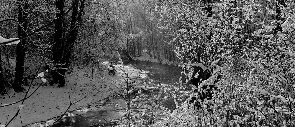 Winter am Zacken