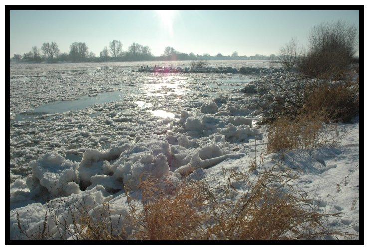 Winter an der Elbe, Januar 2010