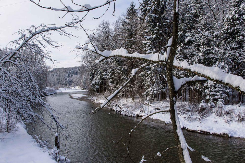 Winter an der Emme