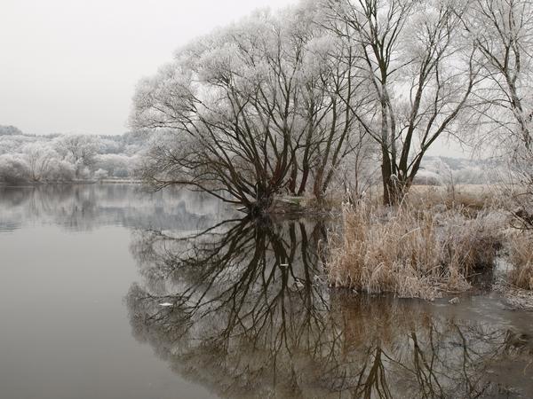 Winter an der Havel