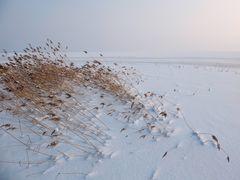 Winter an der Ostsee - Schneedüne 1