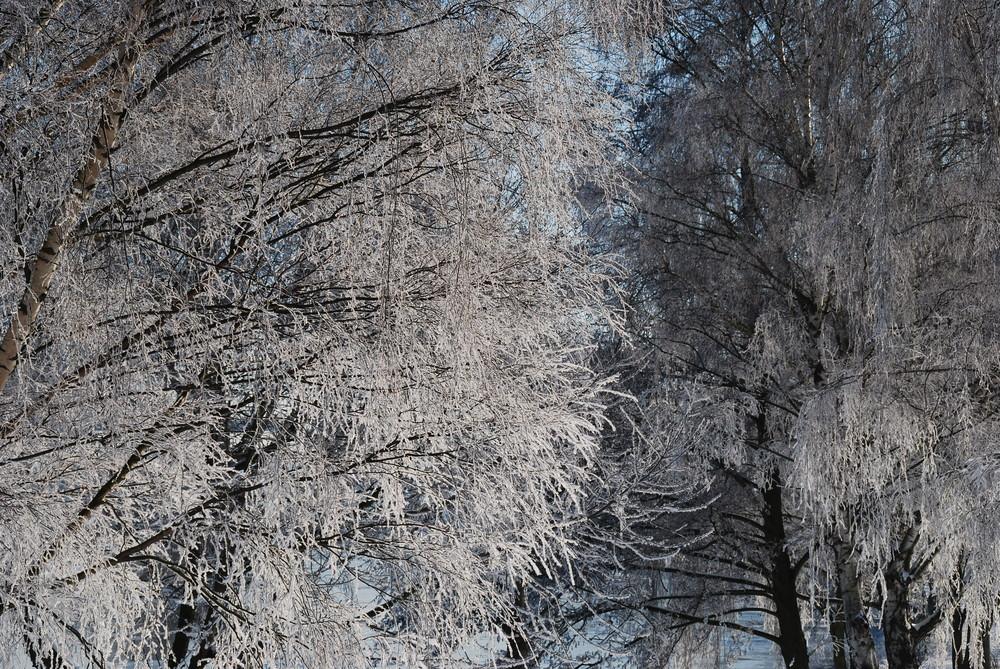 Winter an der Ruhr III