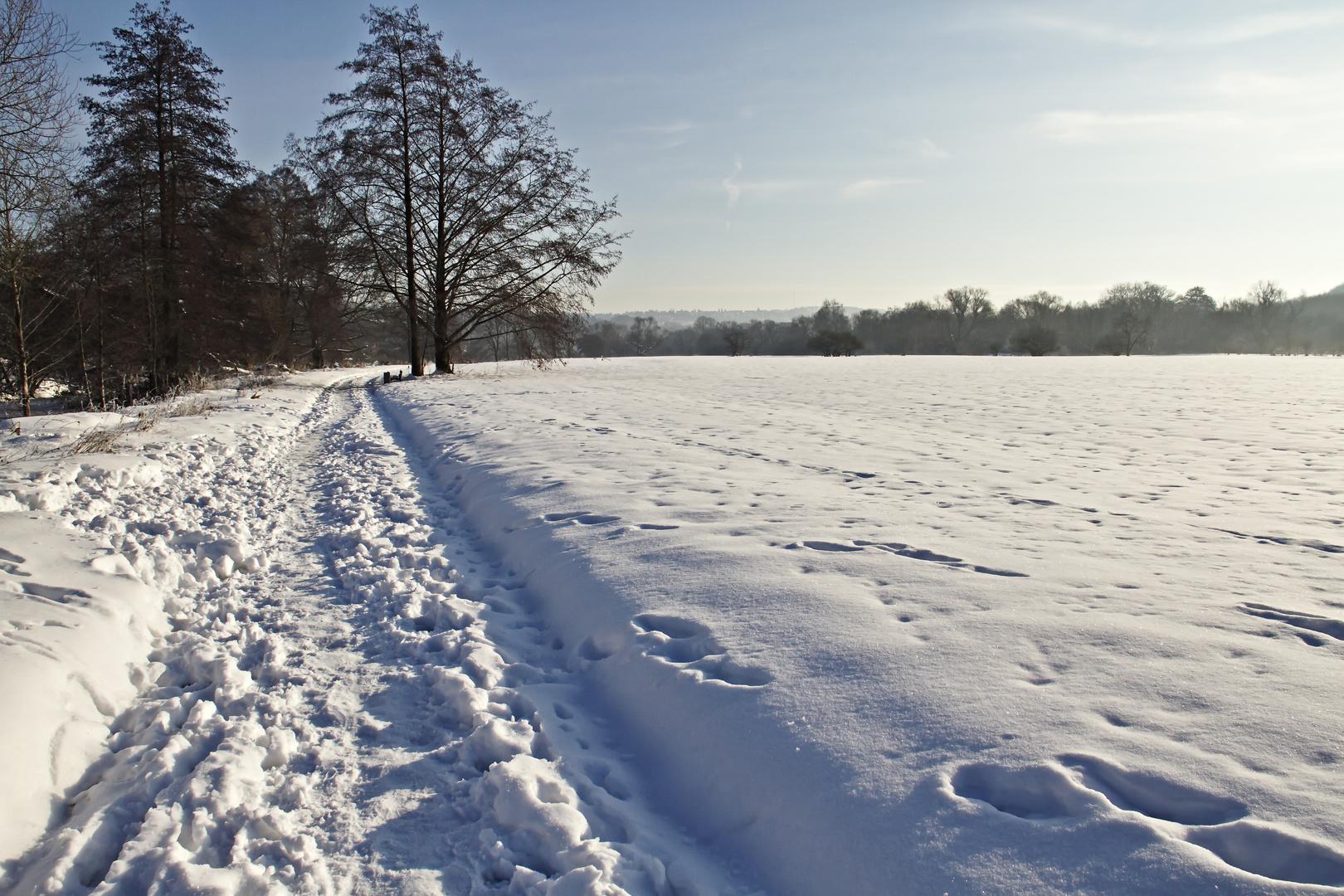 Winter an der Ruhr Nr.2