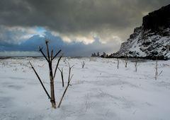 Winter auch in Vik