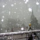 Winter auf Balkonia