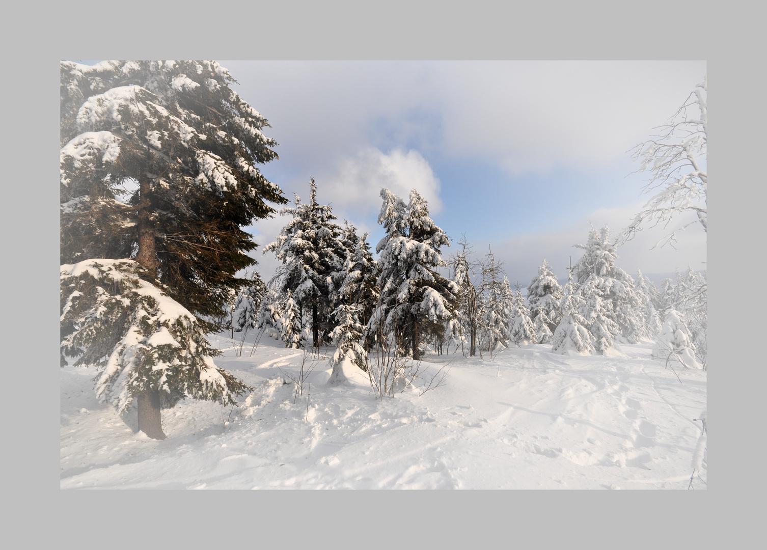 Winter auf dem Fichtelberg,  (Archiv) Februar 2012......
