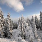 ******************* Winter auf dem Fichtelberg *******************bei Minus -18°C