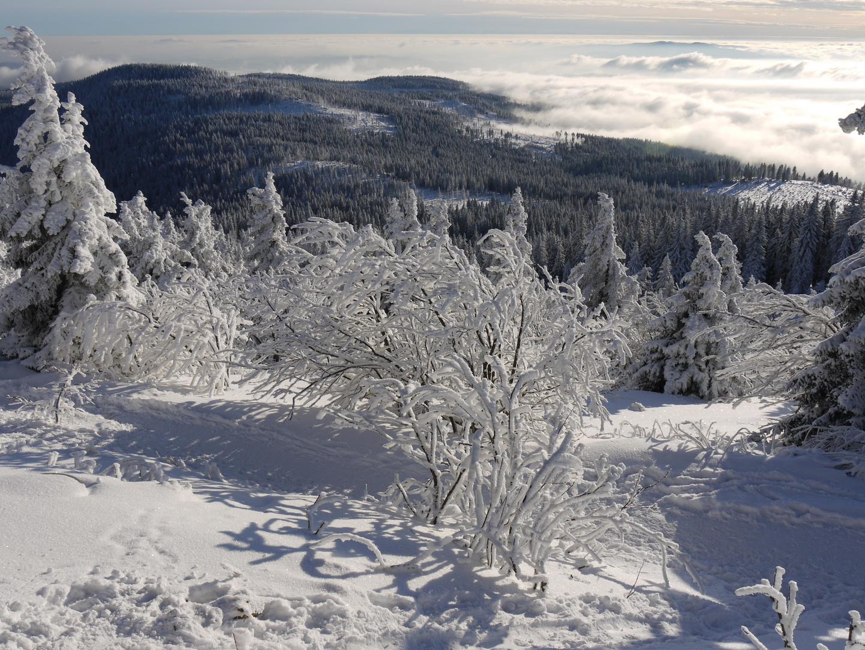 Winter auf dem großen Arber 201 ..Bild 2 und 3