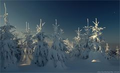Winter auf dem Hassberg