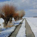 Winter auf dem Lande