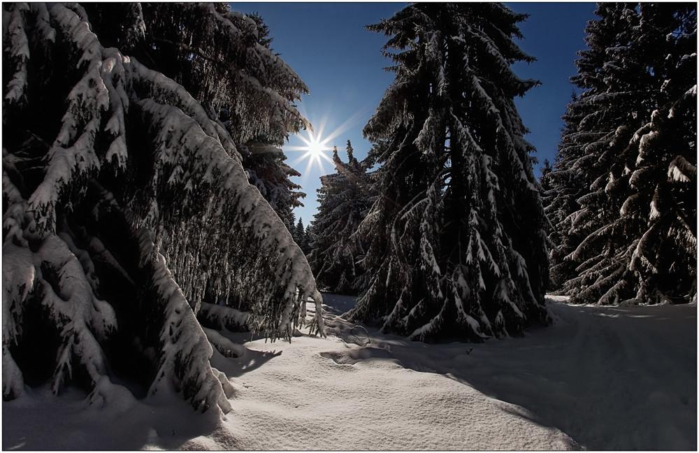 Winter auf der Fuchskaute.....