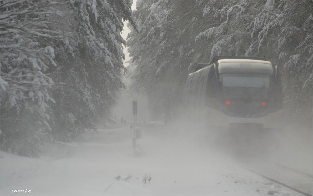 Winter auf der Heidekrautbahn 3