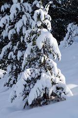 Winter auf der Turrach