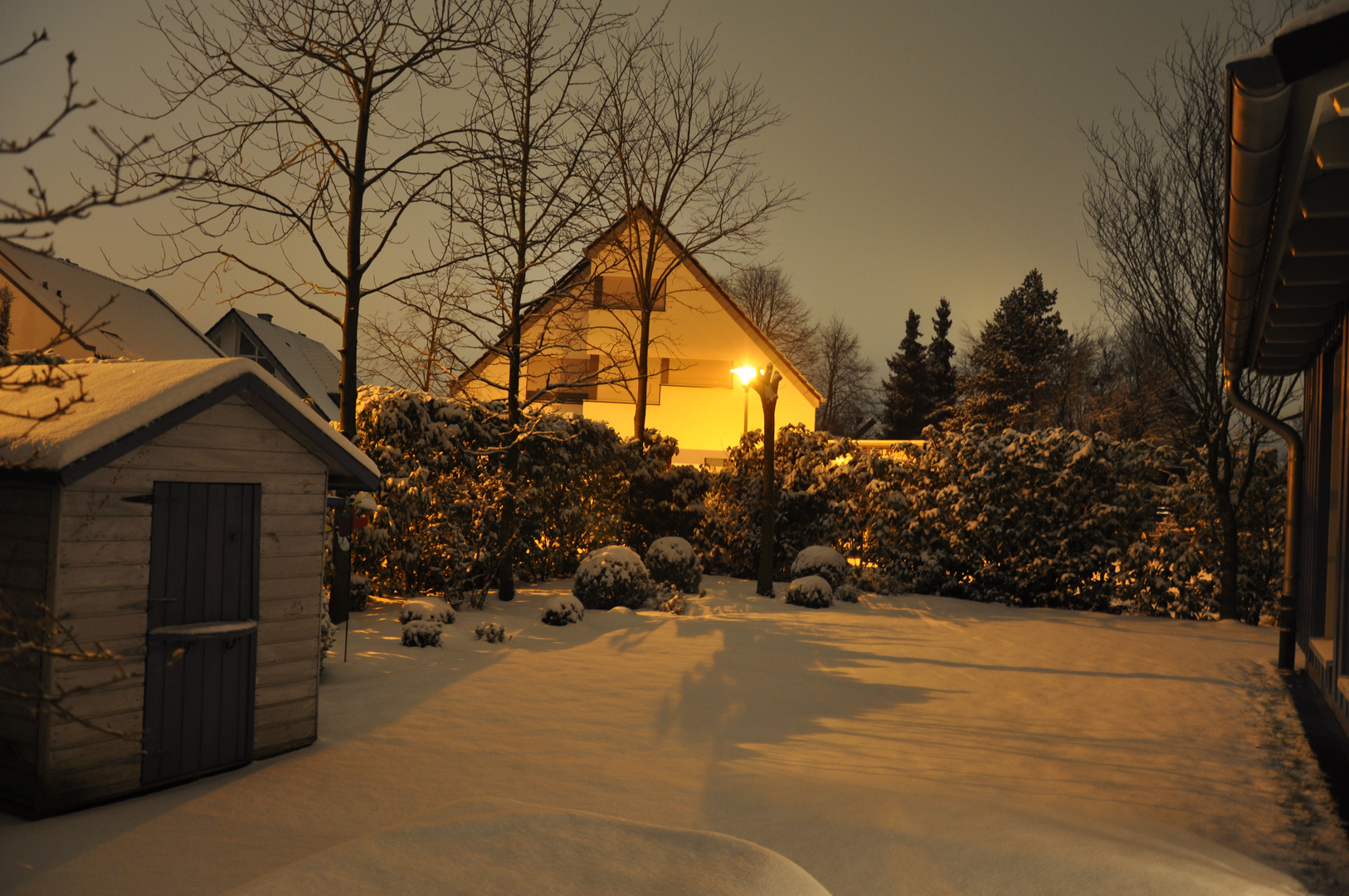 Winter bei Nacht